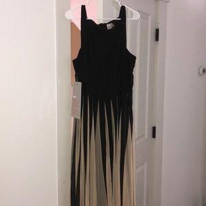 Black and Tan Midi Dress